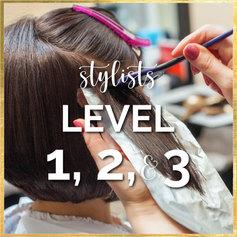 Stylists Level 1, 2, & 3