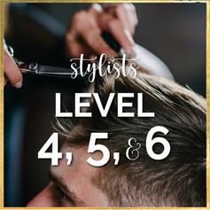 Stylists Level 4, 5  & 6