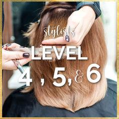 Stylists Level 4, 5, & 6