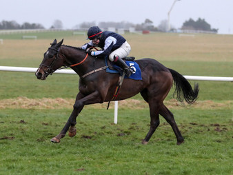 And The Winners Keep Coming For Jet Away Ahead Of Cheltenham