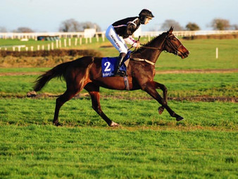 Grech And Mullins Combine For Bumper Win
