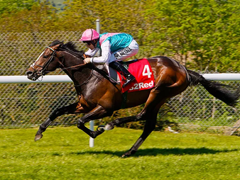 The Stories Behind the Stats – Return of Mares 2020, Jet Away