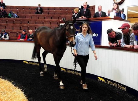 Exciting Start For Jet Away At May Store Sale