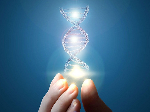 Reprogrammer son ADN