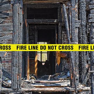 arson task force pic 1.jpg