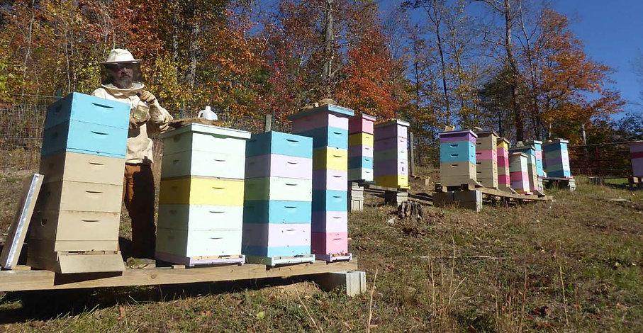 hives1.jpg