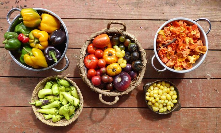 Harvest 9-18-18