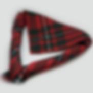 scout-neckerchief.JPG