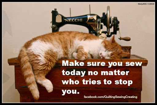 cat on sewing machine Make sure you sew today no matter who tries to stop you