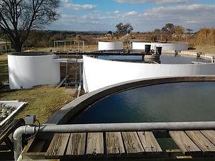 ZINWA Assessment water project - Macheke