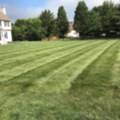 lawn maintenance 2.jpg