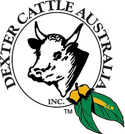 Dexter Cattle Australia Inc. A Unique trademark of Dexter Cattle In Australia developed by Peter Gardiner is a feature on all DCAI publications