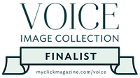 VOICE Finalist- BADGE- green.png