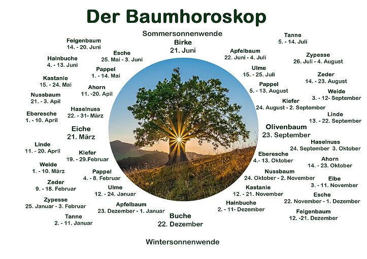 Baumhoroskop A3 Final.jpg