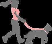 Icone passeando com cachorro