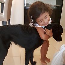 Cachorro adotado