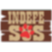 Logo Indefesos.png
