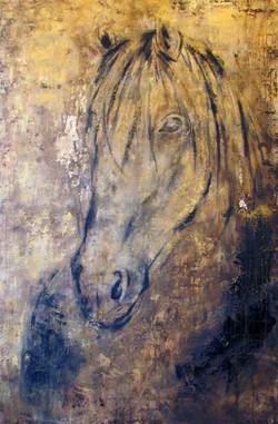Equus IV