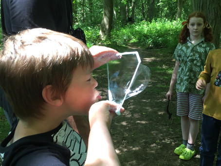 Summery Forest school