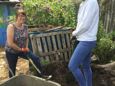 News: Volunteers and sunshine at the allotment