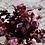 Thumbnail: Mini dyed eucalyptus bundle