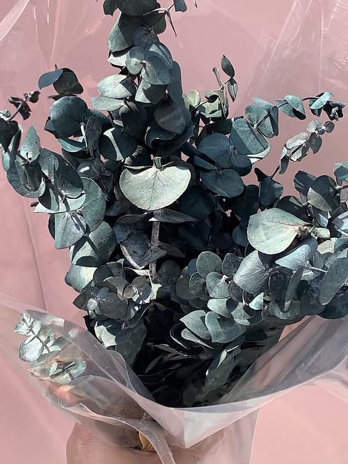 Mini dyed eucalyptus bundle