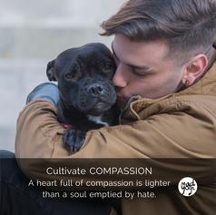 23 MadYogi Posters (compassionate heart)
