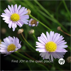 20 MadYogi Posters (quiet places).png