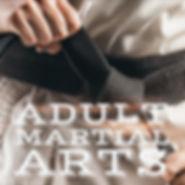 adult martial arts button v3.jpg