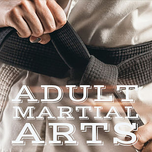 adult martial arts button v3.jpg