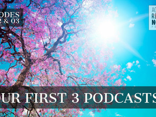 Our First 3 Podcasts