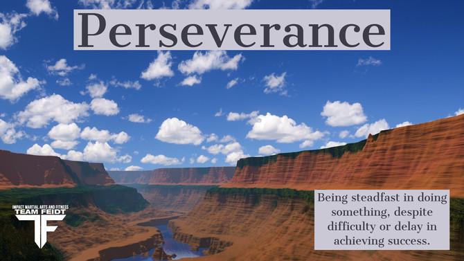 Black Belt Principle #5-Perseverance