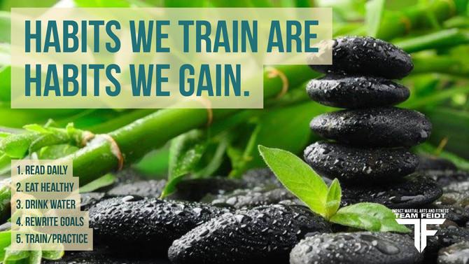 Habits We Train, are Habits We Gain.