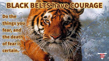 Black Belts Have COURAGE