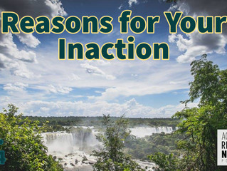 Reasons for Your Inactions