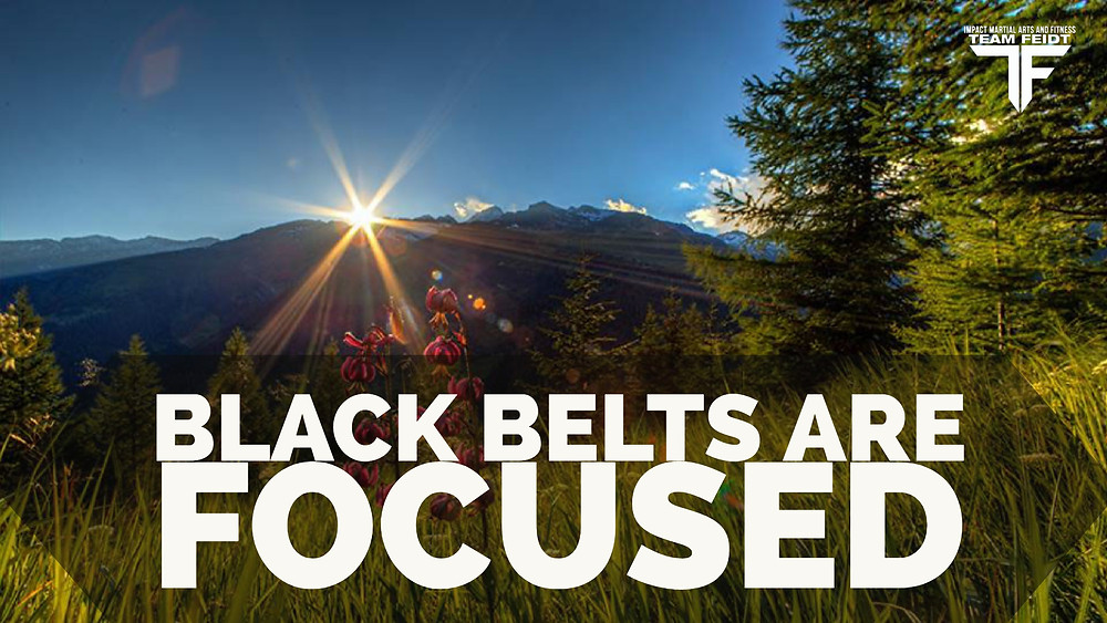 Black Belts Are Focused