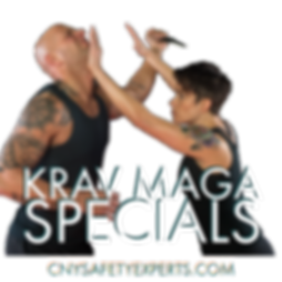 self-defense, krav maga, safety