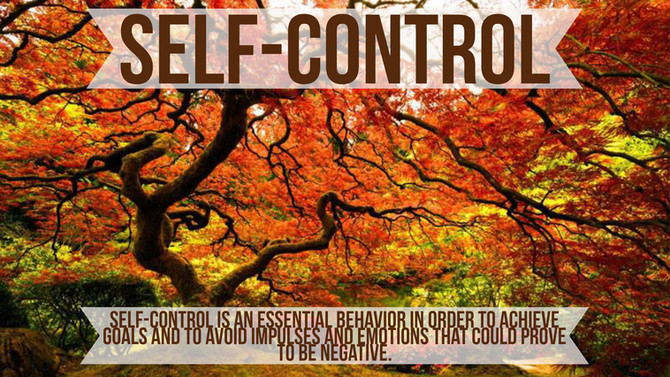 Black Belt Principle #4- Self-Control
