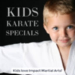 Kids karate, martial arts & kickboxing