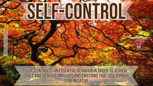 Black Belt Principle #4: Self-Control