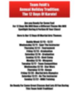 12 Days Of Martial Arts_2019.jpg