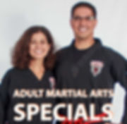 Martial Arts, Muay Thai, kickboxing and karte for adults