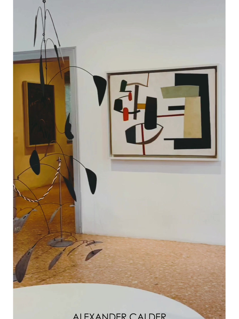 Ingresso Guggenheim Venice.MP4