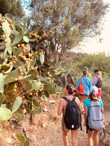 Pantelleria Experience