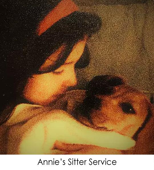 Annie's Sitting Service