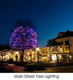 Main Street Tree Lighting