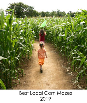 Ready To Get Lost? Try A Local Corn Maze
