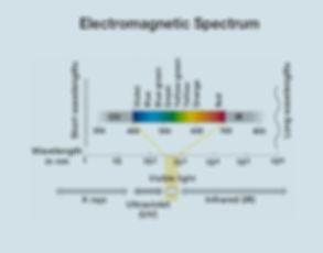 biophotonics-R.jpg
