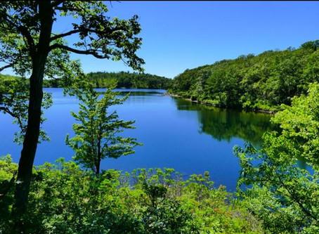 Sunfish Pond Hike - June 2020