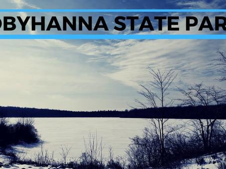 5 Mile Hike at Tobyhanna State Park
